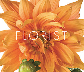 Eight page color brochure for Freshly Cut Florist